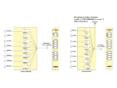 7706CWDM CWDM光波長多重/分割モジュールの画像