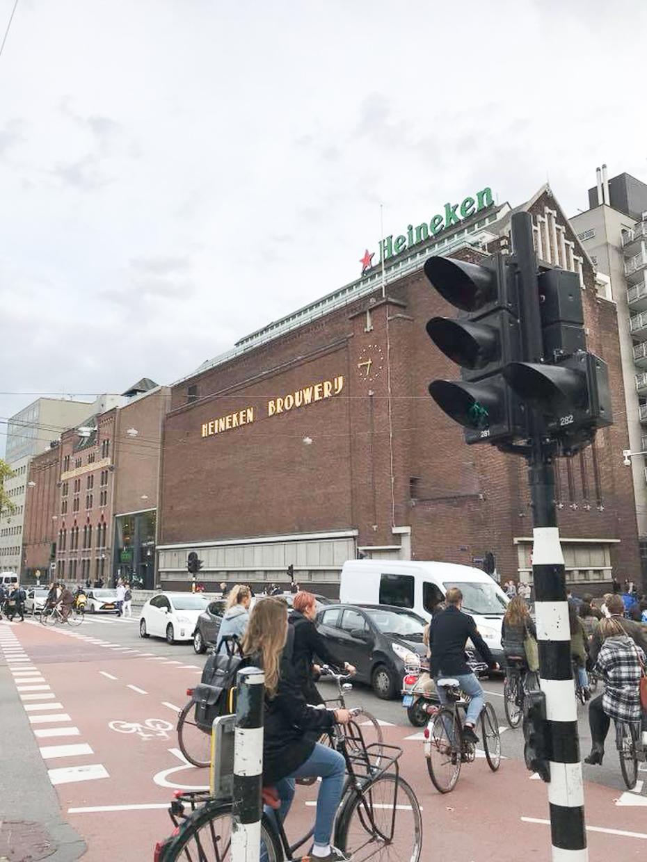 オランダ6-6