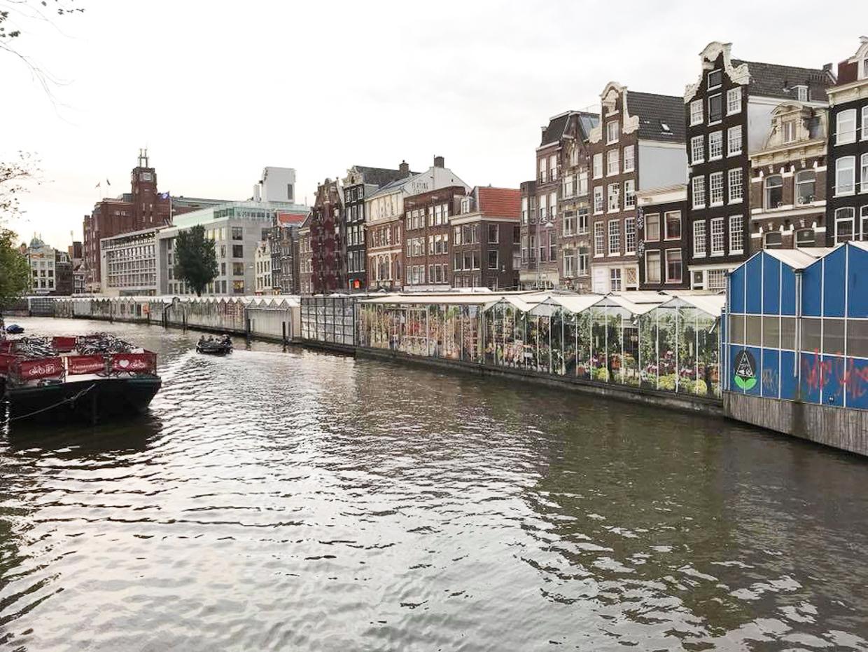 オランダ10-10